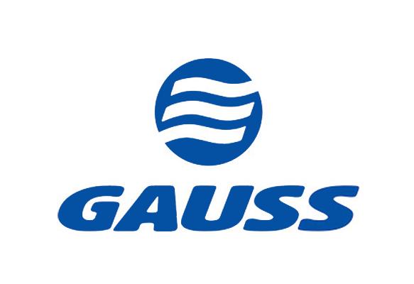 Gauss e Real Peças Elétricas